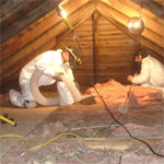 Bat Guano/Insulation Removal