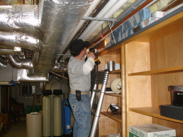 Mice Proofing in Massachusetts - Mice Elimination and Mice