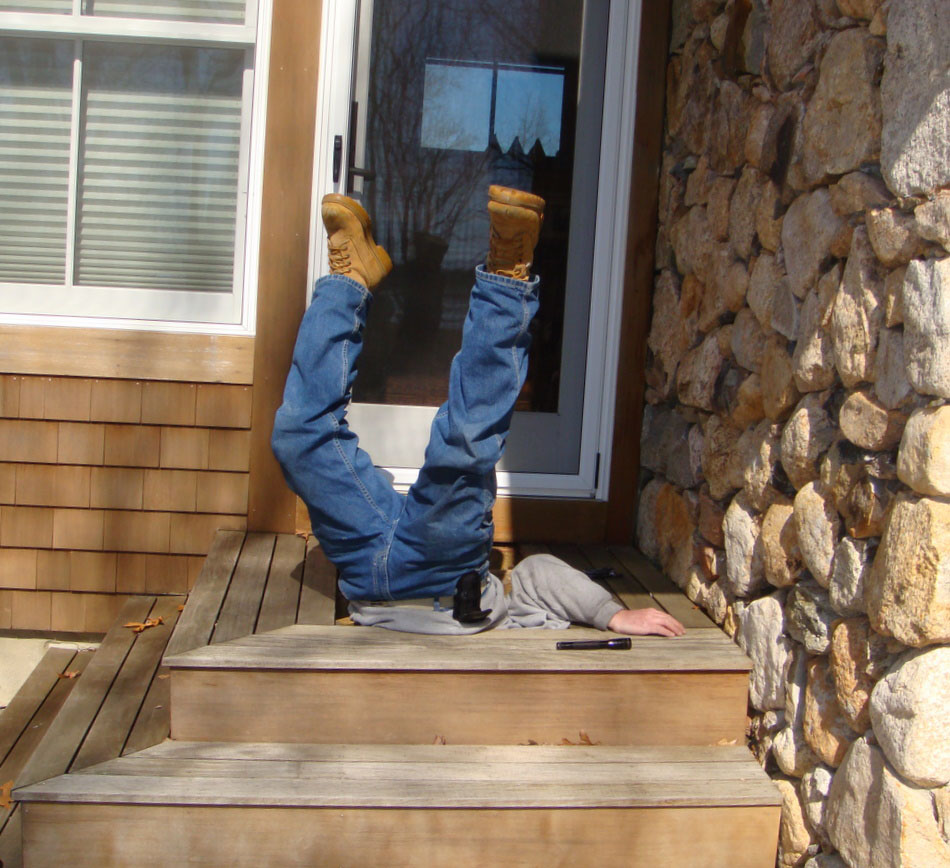 Mouse Removal In Massachusetts Mouse Pest Control