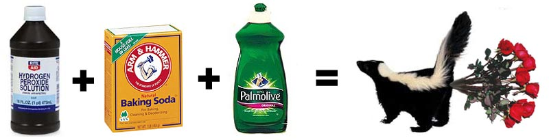 Hydrogen Peroxide, Baking Soda and Palmolive Dish Detergent