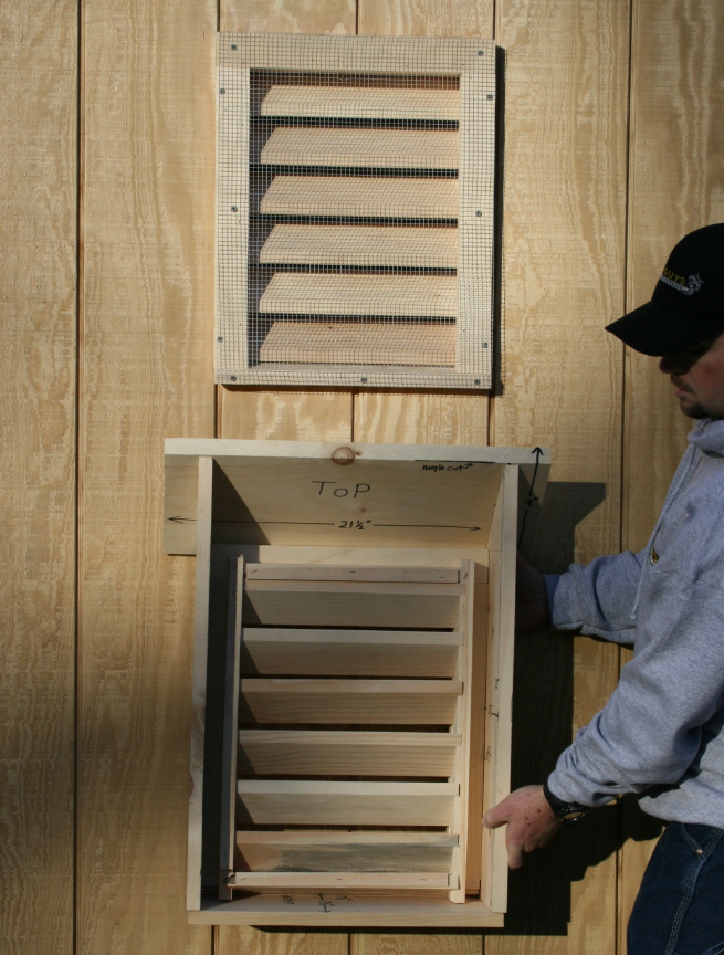 Air Circulation Suburban Bat House Rear View