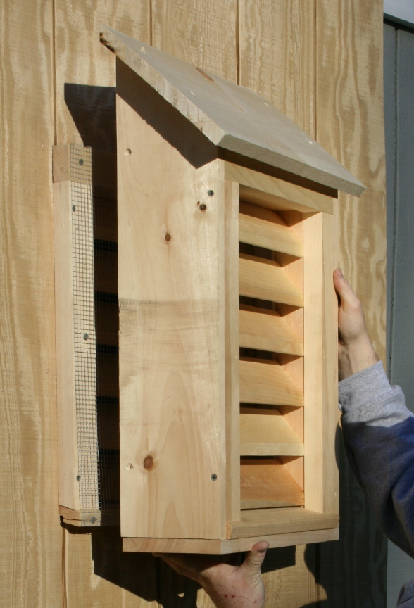 Easy Bat House Plans